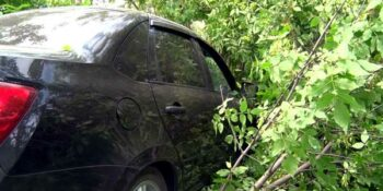 В Дзержинске водитель «Лады», совершая маневр, улетел в придорожные кусты