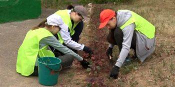 300 подростков трудоустроены этим летом в Дзержинске