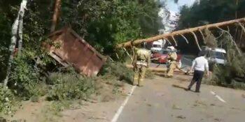 Причиной аварии на Решетихинской трассе стало превышение скорости