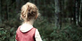 Пропавшую пятилетнюю девочку ищут в лесу второй день